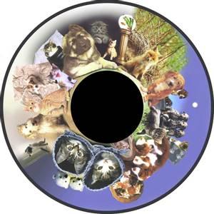 Bilde av Solar Effekthjul Fluffy